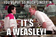 Looks like Chef Ramsay might be a harry Potter fan - Imgur