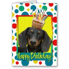 >>>Low Price          Birthday Cupcake - Dachshund - Winston Card           Birthday Cupcake - Dachshund - Winston Card This site is will advise you where to buyShopping          Birthday Cupcake - Dachshund - Winston Card Here a great deal...Cleck link More >>> http://www.zazzle.com/birthday_cupcake_dachshund_winston_card-137431396087184414?rf=238627982471231924&zbar=1&tc=terrest