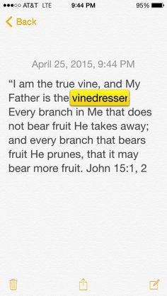 #The Word #vinedresser