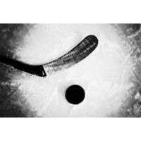 Hockey Stick and Puck Wall Mural