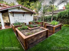 Un jardin organisé