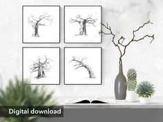 Black And White Wall Art, White Walls, Black White, Tree Wall Art, Tree Art, Above Couch, Baobab Tree, Bee Theme, Hanging Pictures