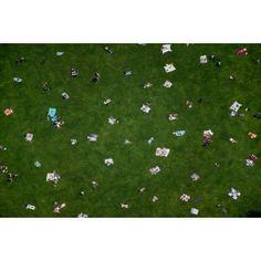 Gray Malin - Central Park Lawn