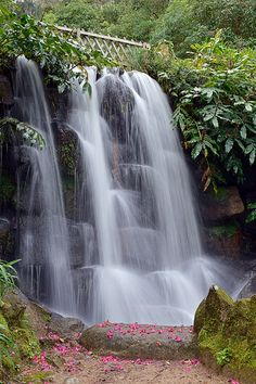Waterfall at Monserrate Palace, Sintra, Portugal. UNESCO World Heritage Site