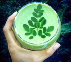 Ingredients: - 1 banana - 1 tablespoon of MORE Moringa powder - 2 green apples - A handful of spinach - A handful of Kale - Fresh Moringa leaves to decorate if you have them Directions: Mix and blend all ingredients and enjoy your supergreen booster! Breakfast Smoothies, Smoothie Drinks, Smoothie Recipes, Juice Smoothie, Healthy Smoothies, Healthy Drinks, Breakfast Recipes, Moringa Recipes, Superfood Recipes