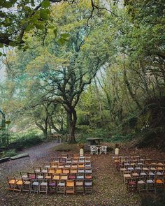 fforest - unique & outdoor festival wedding venues in Wales
