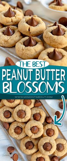These delicious Peanut Butter Blossoms are a holiday favorite! Soft and chewy peanut butter cookies rolled in sugar and topped with a kiss! There is nothing better than peanut butter and chocolate together and these cookies are proof! A favorite Christmas cookie recipe! // Mom On Timeout #peanutbutterblossoms #peanutbuttercookies #cookies #chocolate #christmascookies