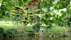 Parc Oriental de Maulevrier Climbing Roses, Green Garden, Bonsai, Garden Design, Zen, Beautiful Pictures, Outdoor Structures, France, Stone