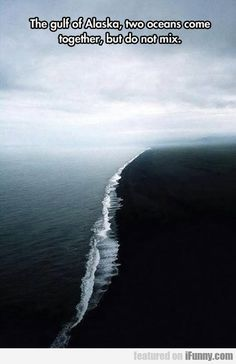 Gulf of Alaska.where two oceans meet but do not mix >>> This is amazing. i knew i wanted to live in alaska Two Oceans Meet, Beautiful World, Beautiful Places, Beautiful Scenery, Amazing Places, Gulf Of Alaska, Alaska Usa, Alaska Travel, Iceland Travel