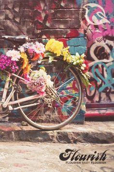 Flourish Bike Colour Sisterhood iPhone Wallpaper: Hillsong Collected