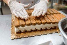 Rețeta de Tiramisu este, poate, cea mai populară rețetă de desert italiană, la baza căreia stau biscuții Savoiardi (pișcoturile) bine înmuiați în cafea concentrată și straturi de cremă pe bază... Romanian Desserts, Romanian Food, Plain Cake, Hungarian Recipes, Pastry Cake, Cookies And Cream, Trifle, Sugar And Spice, Cake Recipes