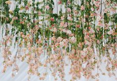 All the Photos From The Knot Dream Wedding at the Biltmore Estate! | TheKnot.com