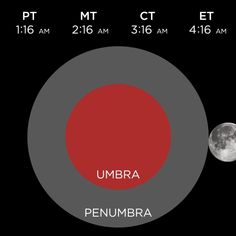 """Total eclipse of the moon! """"'Blood Moon' Eclipse To Be Visible Throughout U.S. : The Two-Way : NPR"""""""