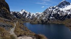 Tourist survives for month in frozen New Zealand wilderness after partner diesRouteburn Track.  Image: Robyn Kawakami / New Zealand Government  By The Associated Press2016-08-25 15:08:35 UTC  A tourist from the Czech Republic whose partner fell to his death survived a harrowing month in the frozen New Zealand wilderness before being rescued police said Thursday.  The woman was found Wednesday living in a park wardens hut on the snowed-in Routeburn Track Inspector Olaf Jensen told reporters…