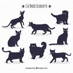 You can never have enough  cat silhouette vectors.  This one is particularly…