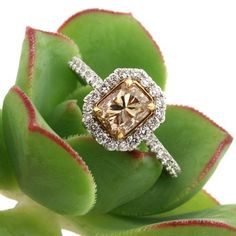 Women's #Fashion #Jewelry: Diamonds and Gemstones:  Mark Broumand 1.83ct Fancy Light #Yellow Brown Radiant Cut Diamond Engagement #Ring: Rings