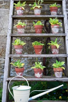 DIY garden inspiration for your terrace.