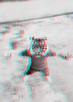 #Just #Watching #Tiger