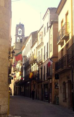 Ciudad Rodrigo, Spain..notice all the Portuguese flags? This is one of the closet Spainish cities to Portugal. My Aunt used to live in Vilar Formoso and we would walk to Ciudade Rodrigo to visit family and do most of the shopping. I feel a connection to this part of Spain.