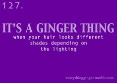It's a ginger thing #127: When your hair looks different shades depending on the lighting.  Redhead, Ginger, Red hair, MC1R