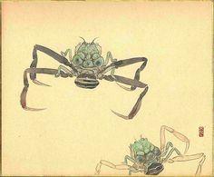 Heike-Crabs-of-Dan-n-ura-Bay.jpg 3,455×2,866 pixels