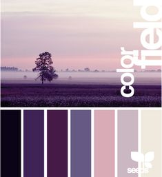 colour palette idea for bedroom - cream walls with dark purple accents, furniture birch wood and white. Just what I need