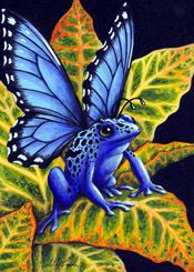 Blue Frog with wings