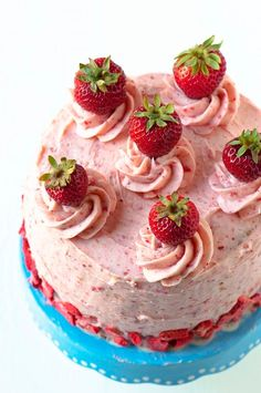 Strawberry Shortcake Layer Cake: Yellow cake with Strawberry Biscuit Buttercream (yes real pieces of biscuit in there) and fresh strawberries. All the great flavors of strawberry shortcake rolled into a layer cake. #sponsored by cassandra