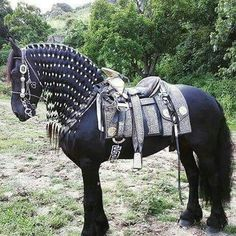 Horse and silver saddle & Medieval Horse Costume Pattern (With Breeching) | Ideas and ...