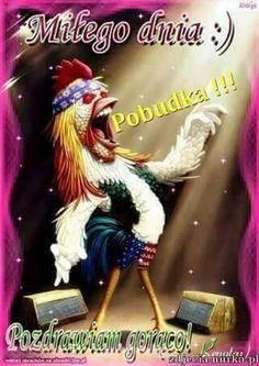 Pobudka Good Morning, Humor, Bom Dia, Buen Dia, Humour, Bonjour, Moon Moon, Funny Humor, Buongiorno