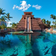 """One of the most amazing water slides in the world. """"Leap of Faith"""" at Atlantis Resort, Paradise Island, Bahamas. You dive right into a pool full of sharks Atlantis Bahamas, Les Bahamas, Nassau Bahamas, Bahamas Honeymoon, Atlantis Island, Bahamas Island, Vacation Places, Vacation Destinations, Dream Vacations"""