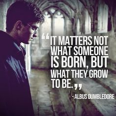 """It matters not what someone is born, but what they grow to be."" - Albus Dumbledore"