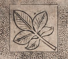 leaf design in concrete texture - http://www.myfreetextures.com/leaf-design-in-concrete-texture/