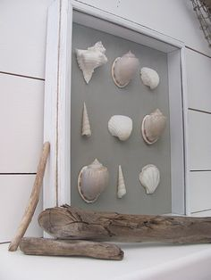 sea shell crafts | Thank you to Michelle for her continuous coastal craft inspiration and ...
