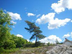 #Norway #Hvitsten