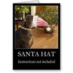 funny dog santa hat christmas greeting card - Funny Dog Christmas Cards