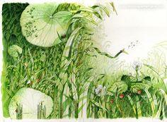Dominique Mertens illustrations