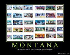 Montana Lic Plates Plate DesignLicense