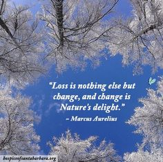 """Loss is nothing else but change, and change is Nature's delight."" ~ Marcus Aurelius"