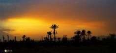 Sur la route de la vallée des Roses à Ouarzazate - MAROC
