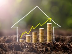 Appraisers Say These Are the Best Things to Do to Increase Home Value Real Estate Investment Companies, Investment Property, Property Investor, Real Estate Investor, Best Flooring, Types Of Flooring, Selling Your House, Finding A House, Home Appraisal