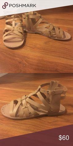 Steve Madden gladiator sandles Tan/nude leather gladiator sandals.  Only worn a few times. Steve Madden Shoes Sandals