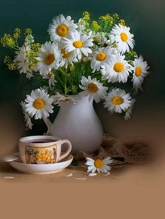 A bouquet of daisies and a cup of tea or coffee Flowers Nature, My Flower, Pretty Flowers, Wild Flowers, Daisy Love, Daisy Daisy, Ikebana, Floral Arrangements, Planter Pots