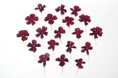 Ranunculus, Candle Making, Soap Making, Dried Flowers, Wedding Decorations, Scrapbooking, Jewelry Making, Candles, Party