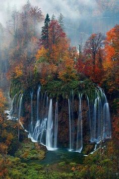 Waterfall & Fall color Trees