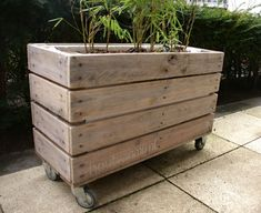 I love the idea of wood planters. Would add some much needed warmth. Wood Planters, Planter Boxes, Garden Planters, Garden Beds, Outdoor Projects, Garden Projects, Dream Garden, Home And Garden, Balkon Design