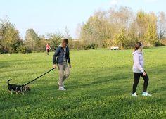Jolly al guinzaglio. / Jolly walking with the leash.