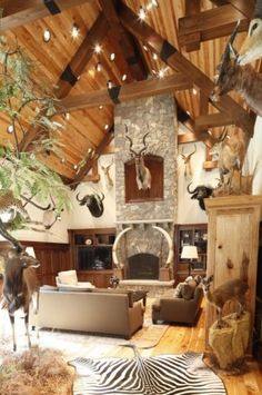 1000 Ideas About Trophy Rooms On Pinterest Jungle Room