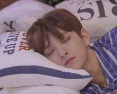 Jisoo Seventeen, Joshua Seventeen, Seventeen Memes, Seventeen Album, Woozi, Jeonghan, Wonwoo, K Pop, Choi Hansol