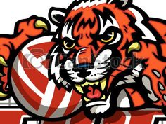 Vector Clipart of tiger volleyball team design with mascot for school, college... csp32897100 - Search Clip Art, Illustration, Drawings and Vector EPS Graphics Images